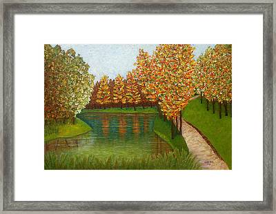 Colored Reflections Framed Print by Madalena Lobao-Tello