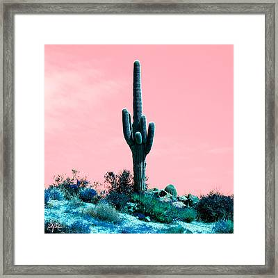 Colored Saguaro Framed Print by Phil Balcastro