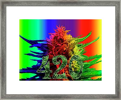Colorful 420 Art Framed Print by Stock Pot Images
