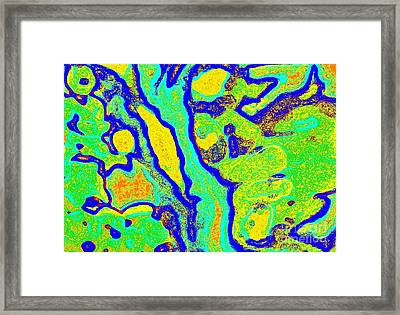 Colorful Abstract Green Yellow Blue Painting No.280 Framed Print by Drinka Mercep