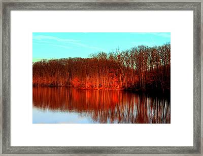 Colorful Afternoon Framed Print by Jose Lopez