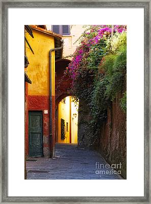Colorful Alley In Portofino Framed Print by George Oze