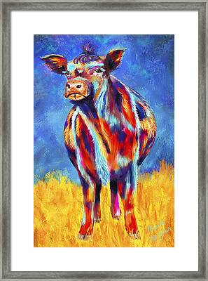 Colorful Angus Cow Framed Print by Michelle Wrighton