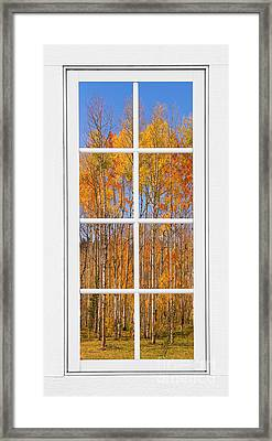 Colorful Aspen Tree View White Window Framed Print by James BO  Insogna
