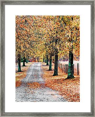 Colorful Autumn Drive Framed Print