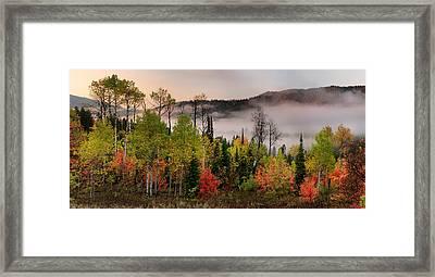 Colorful Autumn Morning Framed Print by Leland D Howard
