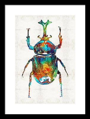 Beetle Framed Prints
