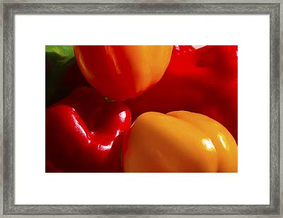 Framed Print featuring the photograph Colorful Bells by Gary Holmes