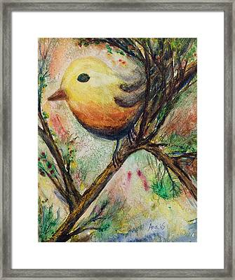 Colorful Bird Framed Print by Anais DelaVega