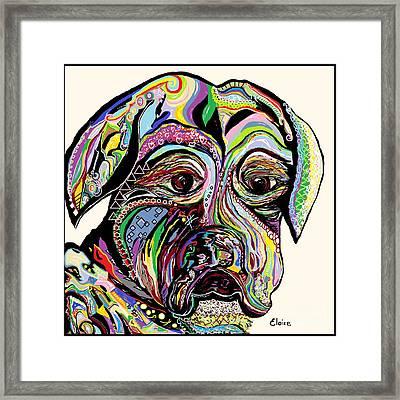 Colorful Boxer Framed Print by Eloise Schneider