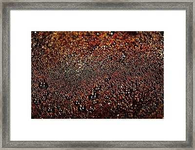 Colorful Bubbles On The Surface Of Filtering Coffee Framed Print