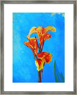 Colorful Canna Framed Print by Margaret Saheed
