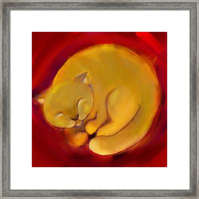 Colorful Cat 1 Framed Print by Anna Gora