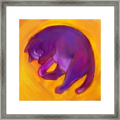 Colorful Cat 5 Framed Print by Anna Gora