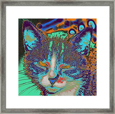 Colorful Cat...   # Framed Print