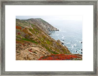 Framed Print featuring the photograph Colorful Cliffs At Point Reyes by Jeff Goulden