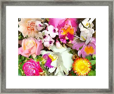 Colorful Collage Framed Print by Van Ness