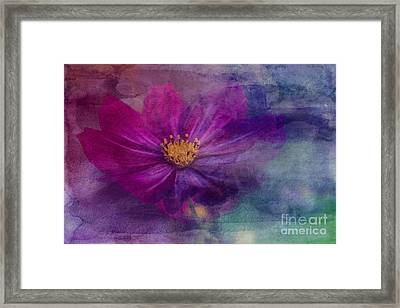 Colorful Cosmos Framed Print