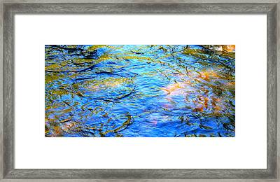 Colorful Creek Framed Print