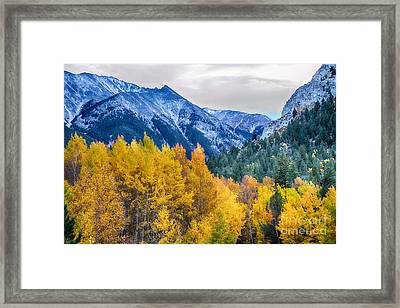 Colorful Crested Butte Colorado Framed Print by James BO  Insogna
