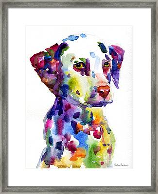 Colorful Dalmatian Puppy Dog Portrait Art Framed Print by Svetlana Novikova