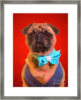 Colorful Dapper Pug Framed Print