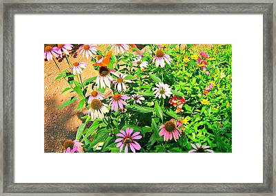 Colorful Framed Print by Debbie Sikes