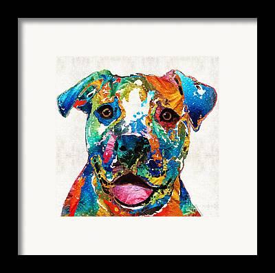 Pitbull Framed Prints