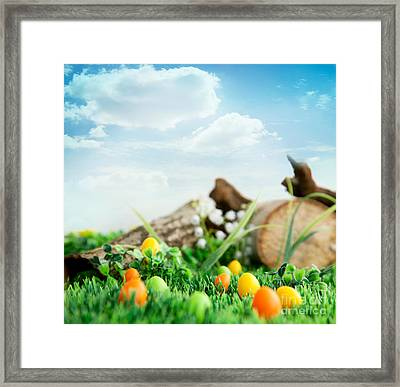 Colorful Easter Eggs Framed Print by Mythja  Photography
