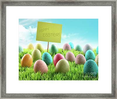 Colorful Easter Eggs With Sign In A Field Framed Print by Sandra Cunningham