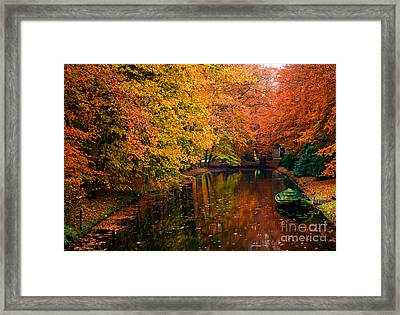 Framed Print featuring the photograph Colorful Forest by Boon Mee