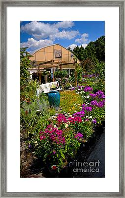 Colorful Greenhouse Framed Print