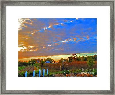 Colorful Harvest Framed Print