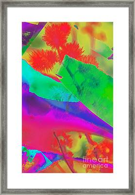 Colorful Framed Print by Kathleen Struckle