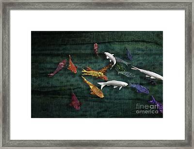 Colorful Koi Meditation Mixed Media By Modern Artist Framed Print by Jani Bryson