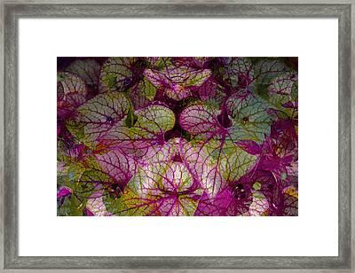 Colorful Leaf Framed Print by Eiwy Ahlund