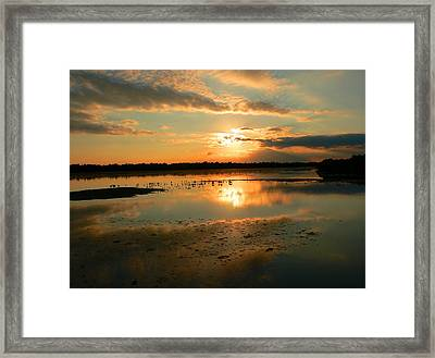 Framed Print featuring the photograph Colorful Light by Rosalie Scanlon