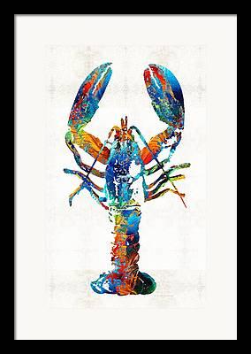 Maine Shore Framed Prints
