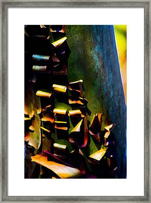 Appealing Nature Framed Print by Yulia Kazansky