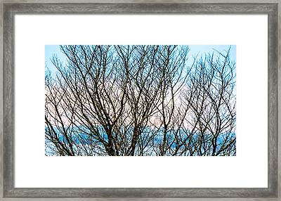 Colorful Maze  Framed Print by Mary Ward