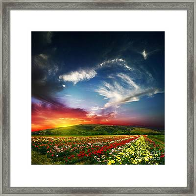 Colorful Nature Framed Print by Boon Mee