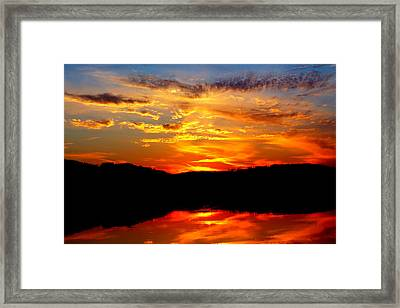Colorful Nature Framed Print by Jose Lopez