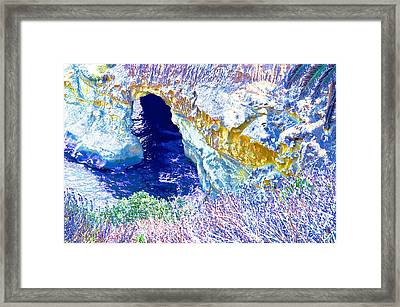 Colorful Nature Framed Print by Regina Avila