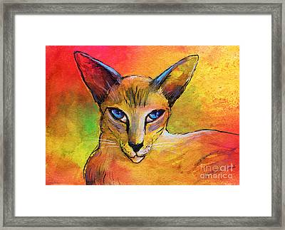 Colorful Oriental Shorthair Cat Painting Framed Print by Svetlana Novikova