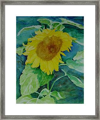 Colorful Original Watercolor Sunflower Framed Print