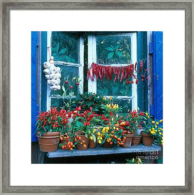Colorful Peppers Framed Print by Hans Reinhard