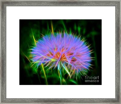 Colorful Puffball Framed Print