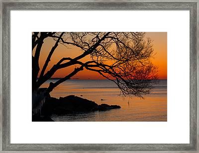 Colorful Quiet Sunrise On Lake Ontario In Toronto Framed Print by Georgia Mizuleva
