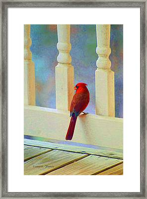 Framed Print featuring the photograph Colorful Redbird by Kenny Francis