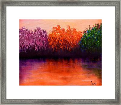 Colorful Seasons Framed Print by Lilia D